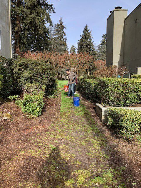 2018 Earth Day Project Photos