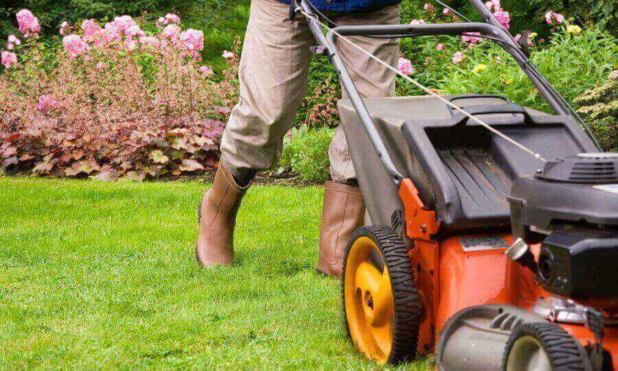 Landscape Maintenance - mowing lawn next to flower beds