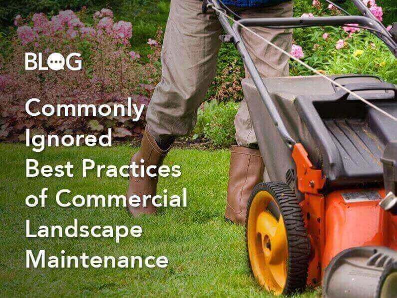 Blog: Commonly Ignored Best Practices of Commercial Landscape Maintenance