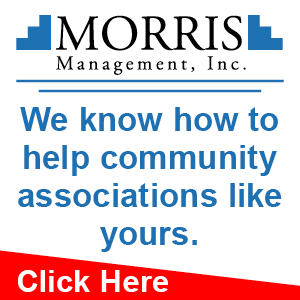 Morris Management Banner Ad